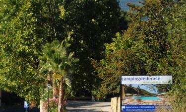 Aktiviteter, underholdning og faciliteter på Camping Delle Rose