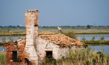 Gå på opdagelse i området nær Rosolina Mare Club
