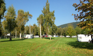 Naturrig campingplads for familien