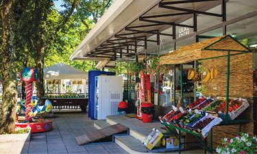 Bary, restauracje i zakupy
