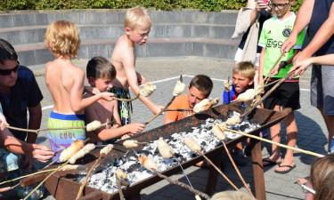 Mere om Camping Scheldeoord