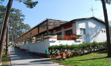 Restaurant, Bars und Einkauf Camping Sao Pedro de Moel