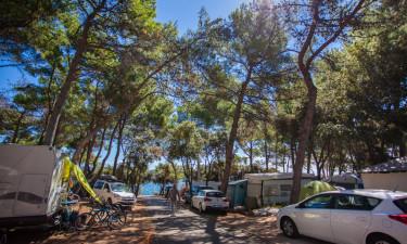 Camping i udkanten af by