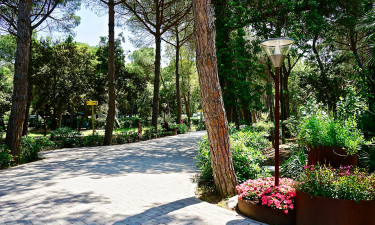 Dejlige Toscana