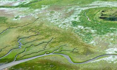 Verdensarven Vadehavet i Friesland