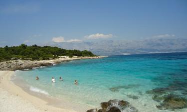Strand og snorkling/dykning