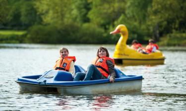 Sportsaktiviteter, spil og underholdning for børn
