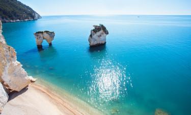 Den skønne kyst