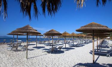 Faciliteter og sandstranden