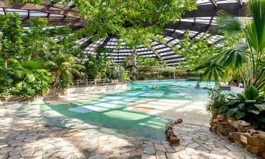 Tropisk badeland