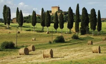 Toscanske lækkerier og lokale vine