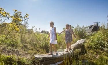 Udforsk nærområdet og Drenthe-regionen