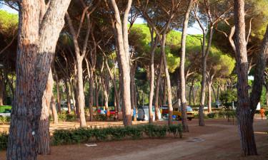 Kombinér campingferien med Rom