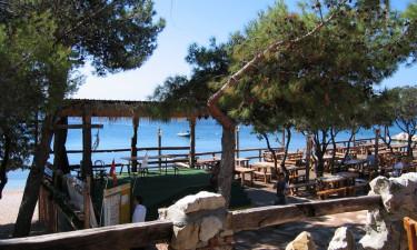 Dlaczego Camping Simuni to dobry wybór na rodzinne wakacje w Chorwacji?