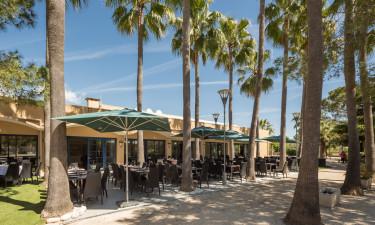 Restauranter og området