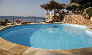 Pool med strandbar og liggestole