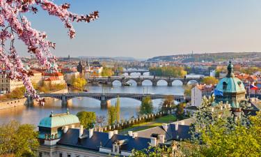 Masser shopping i Prag