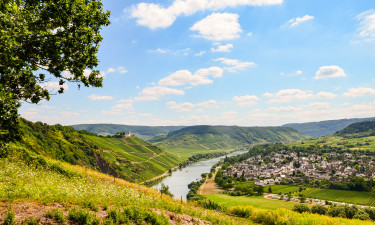Familiecamping i Rheinland-Pfalz