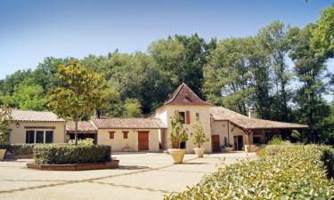 Hyggelige campingplads i Dordogne