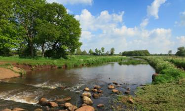 Kemping w Drenthe