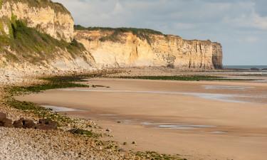 Dlaczego Normandia jest idealnym miejscem na kemping?