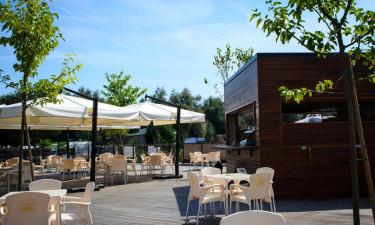 Traditional restaurant og barer