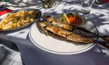 Gastronomie, culture et climat en Croatie