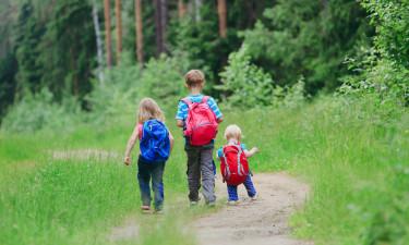 De bedste aktiviteter til børn