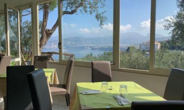 Restaurant med udsigt