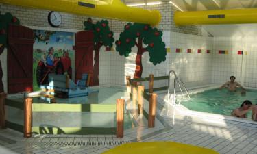Indendørs pool på Camping In de Bongerd