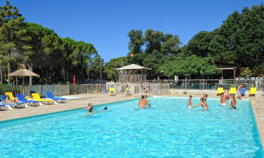 Skøn swimmingpool