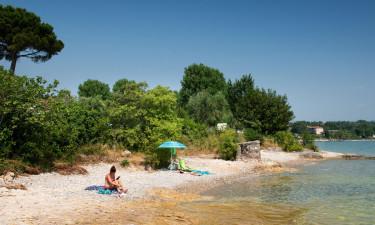 Oplev Gardasøen