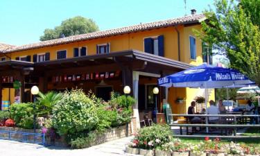 Café, restaurant og snackbar