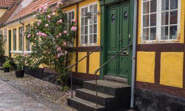 Kultur og bybesøg i Rudkøbning